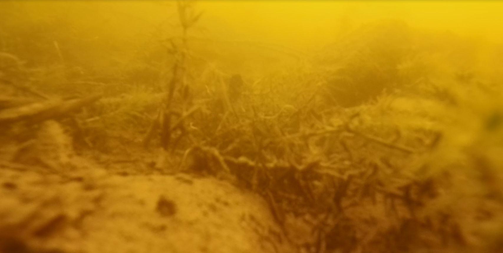 In drei Metern Tiefe sieht es so aus...