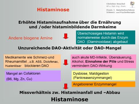 Histaminanflutung und Histaminabbau - ein empfindliches biochemisches Gleichgewicht: ein Screenshot aus einem meiner Fachvorträge zeigt einen Überblick.