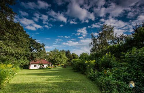 Winzerhaus im Grünen unter blauen Himmel mit weißen Wölckchen