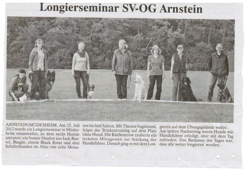 Hunde longieren in Arnstein, jeden Montag ab 18 Uhr