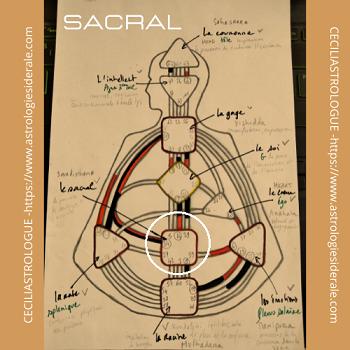 Le centre sacral
