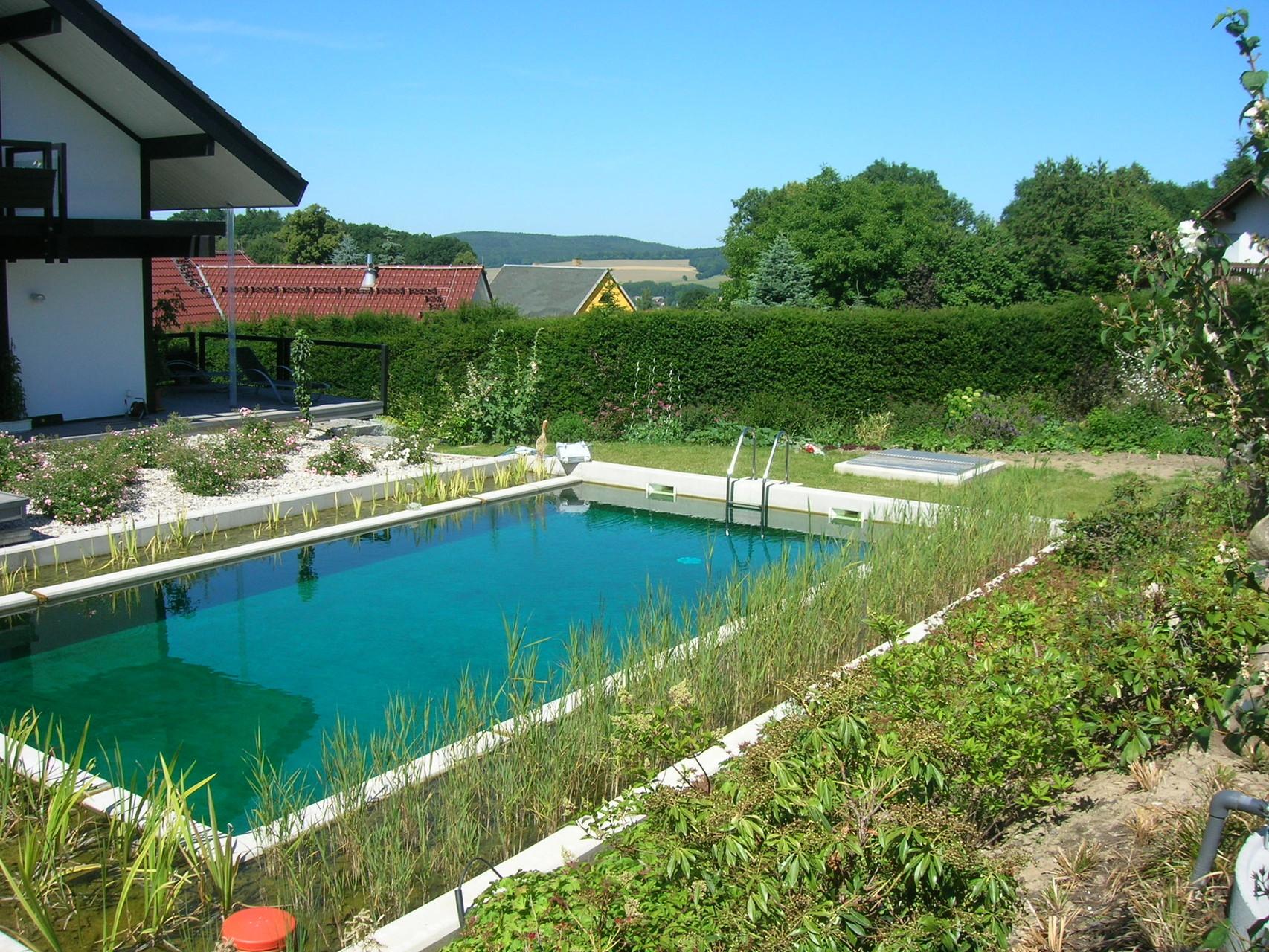 Schwimmteich in Steina, 2014