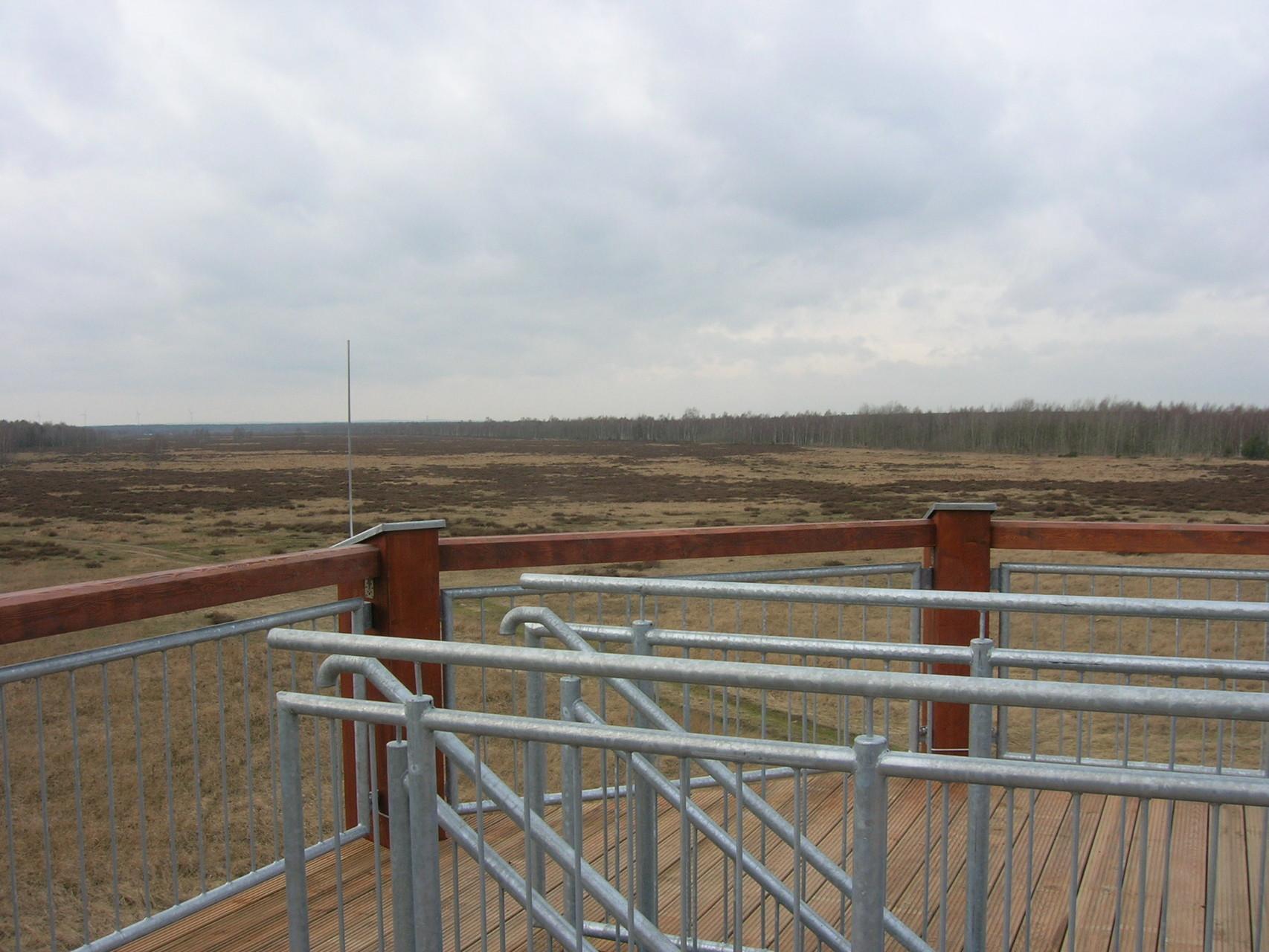 Aussichtsplattform, Naturschutzgebiet Gohrischheide bei Zeithain, 2014