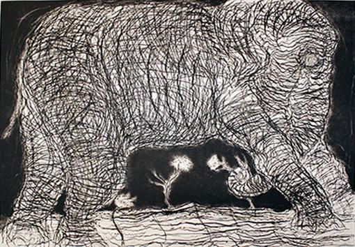 "FRANCISCO TOLEDO, ""Elefante para La Jornada"", punta seca y aguafuerte p/a, 90x119cm/ 115/139.7cm , 2014."