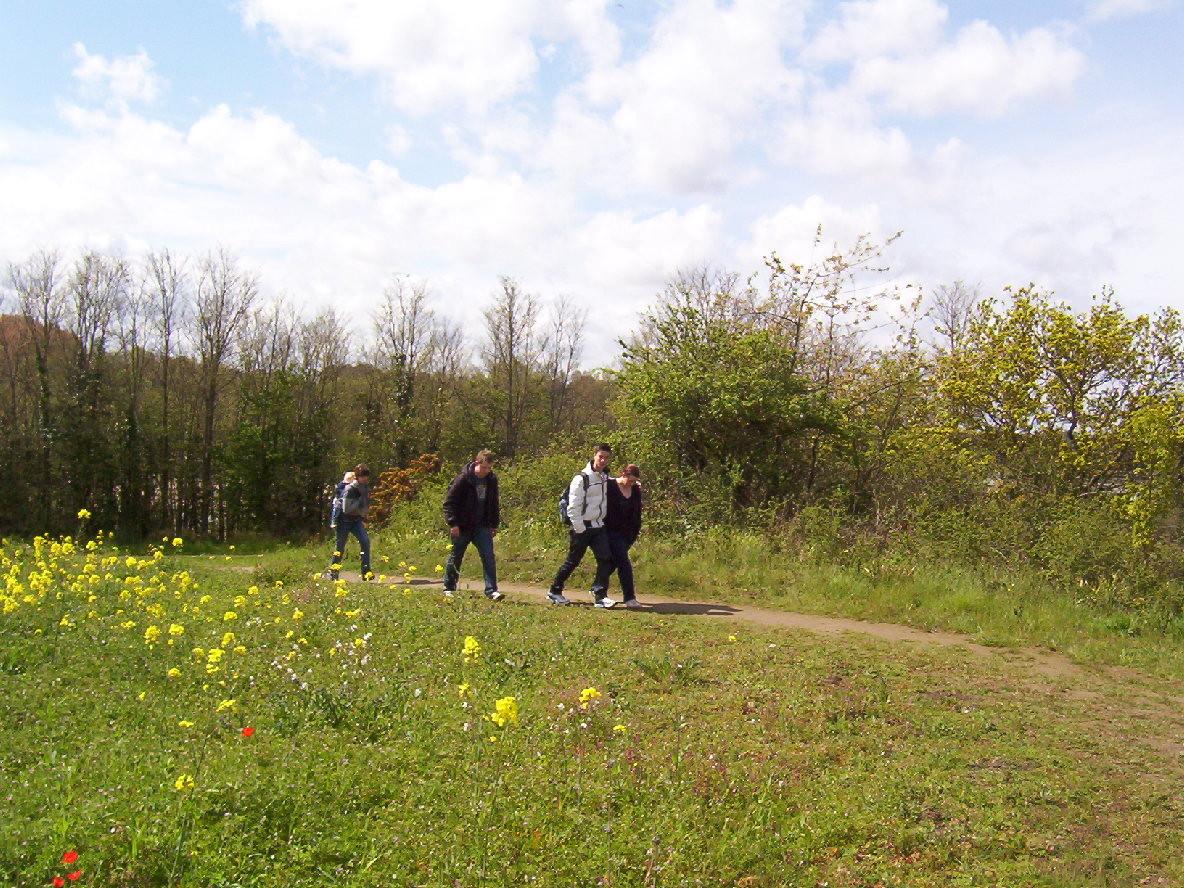Chemin de randonnée au départ de créhen - Bretagne