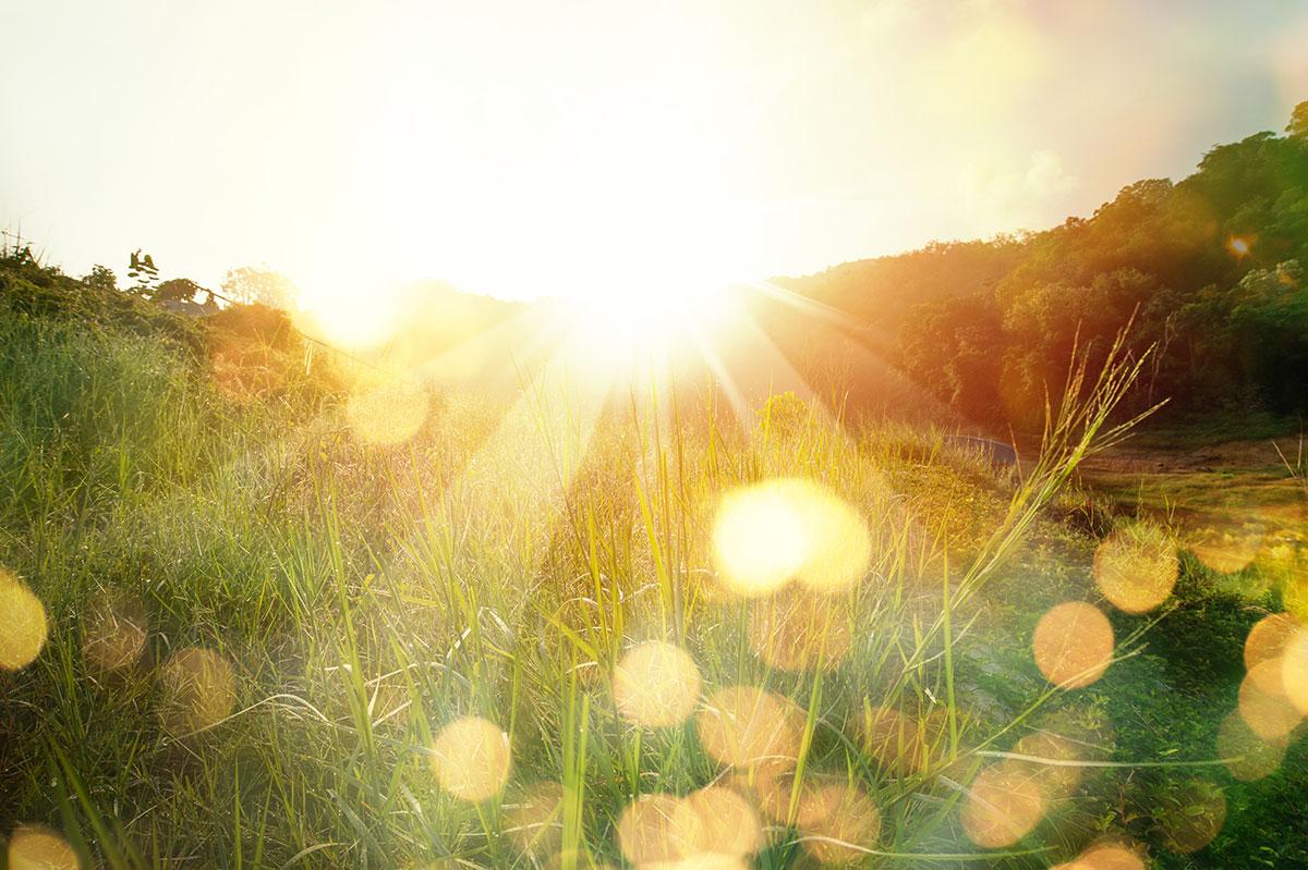 Sonnenlicht wirkt positiv bei MS