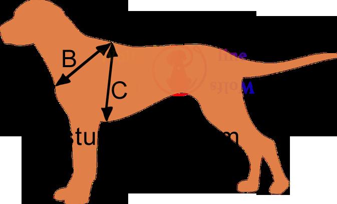 Wolfsline Hunde Geschirr messen Biothane