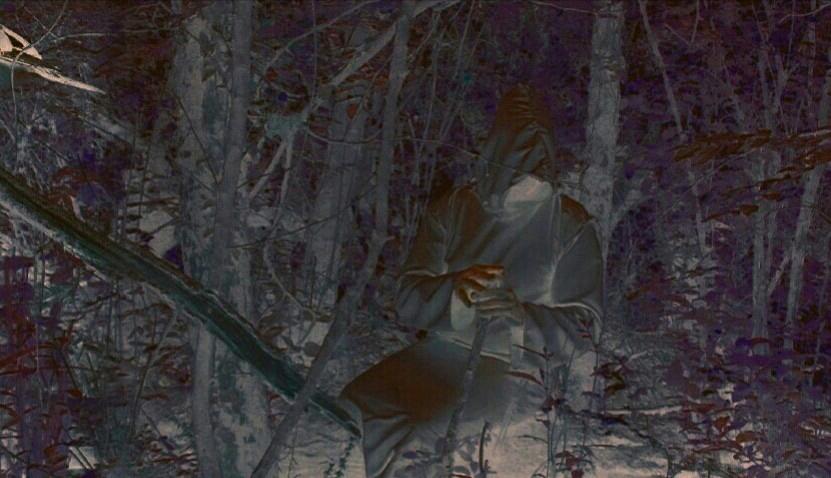 Druide magicien