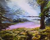 Forêt magique.