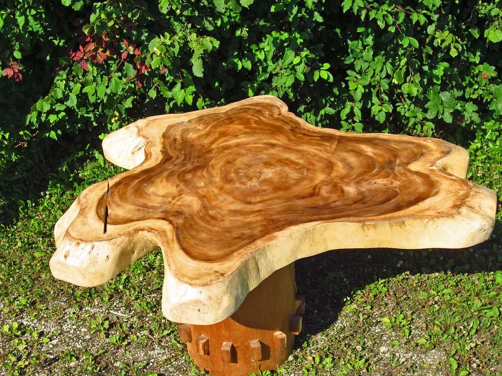 Tischstamm Baumstamm Baumscheibe Holz Naturholz