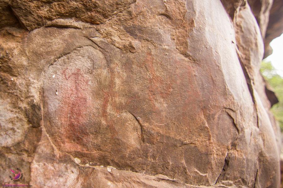 Felszeichnungen der San im H12 Leshiba Wilderness