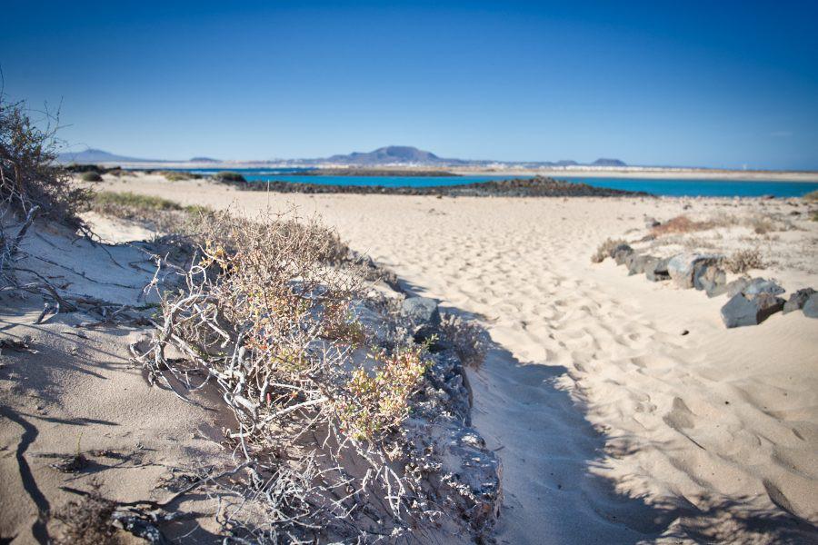 Blick von Lobos nach Fuerteventura
