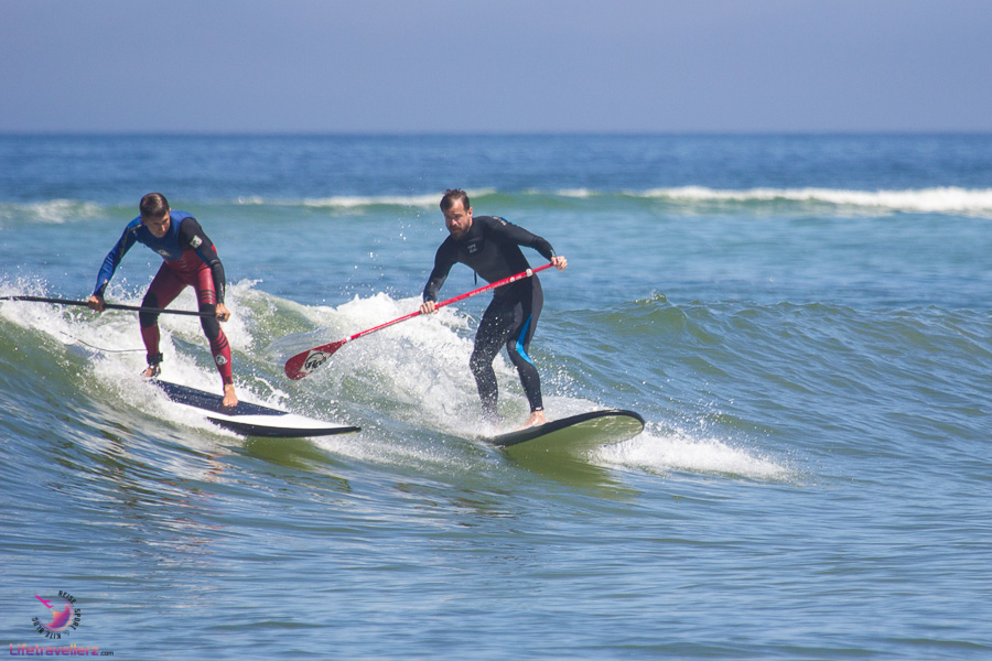 Stand Up Paddling in der Welle - Wave Stand Up Paddling
