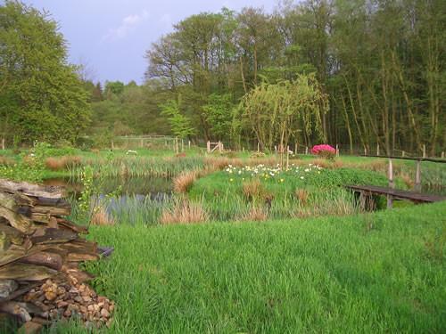 Ein Biotop am südlichen Ende der Weiden. Hier dürfen die Schafe nicht hin.