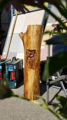 Eulenrelief - Schnitzen mit der Kettensäge - Allgäu-Carving by Martina Gast