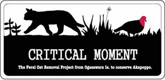 CRITICAL MOMENT