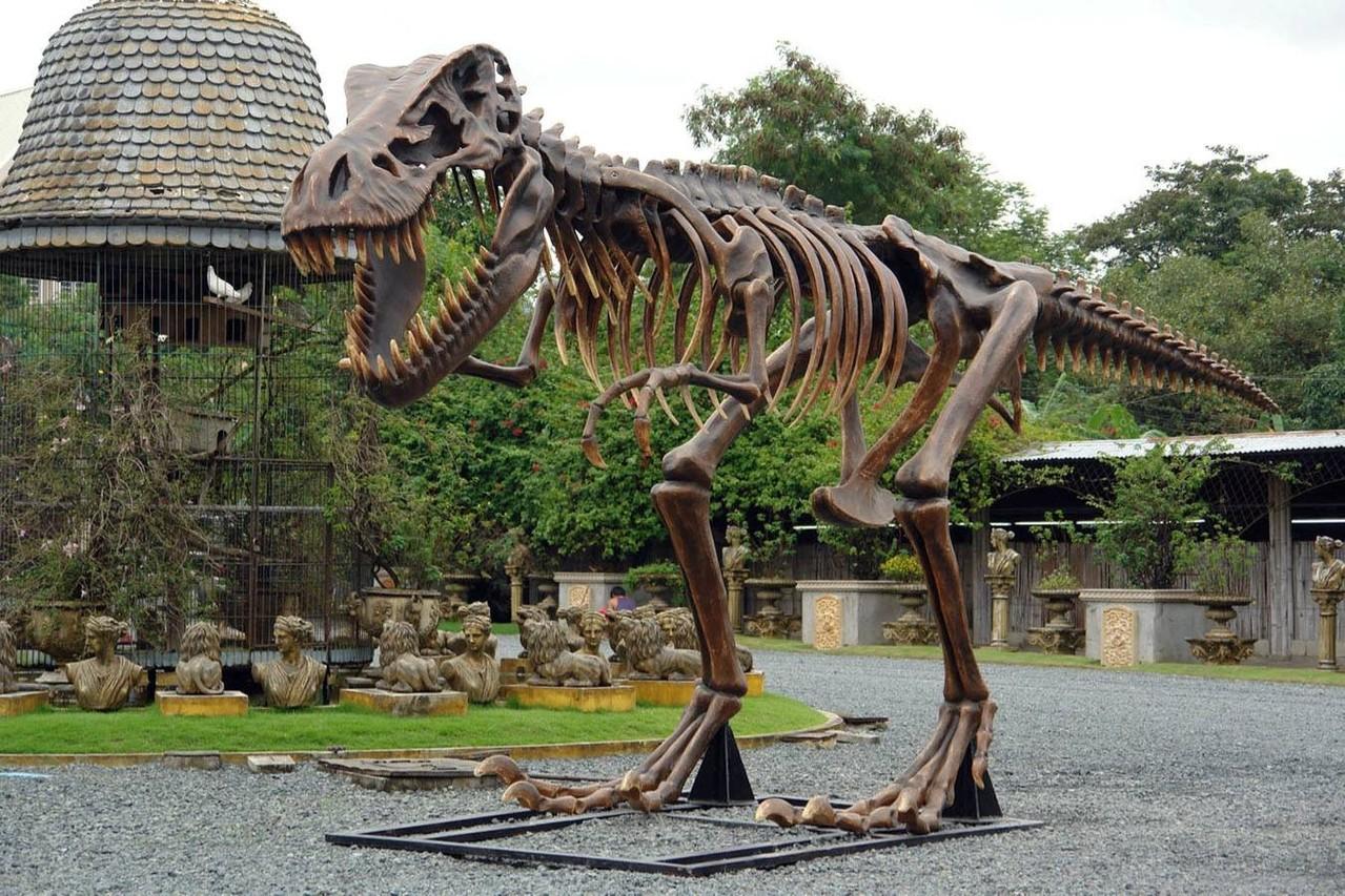 Decoración temática de dinosaurios | Figuras de dinosaurios ...