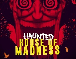 Dimitri Vegas & Like Mike Haunted House of Madness