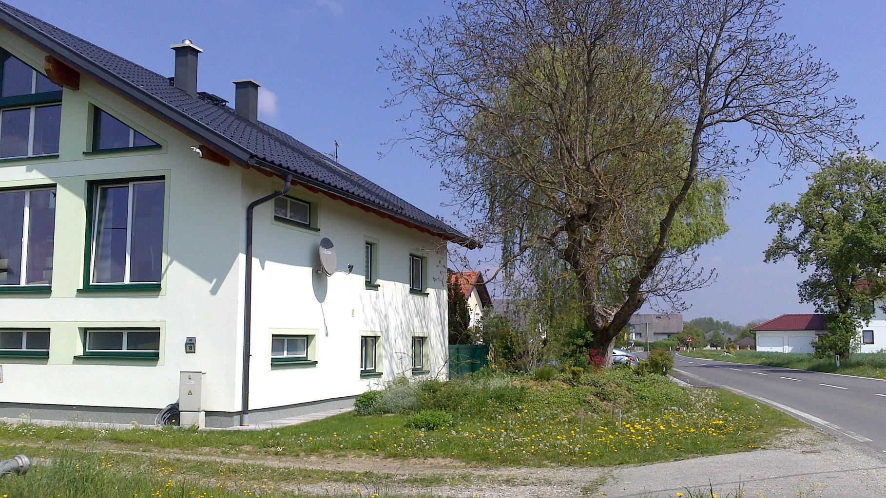Haupthaus und Garten