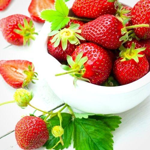 Superfood Erdbeeren in der Beikost: 5 Fragen und Antworten