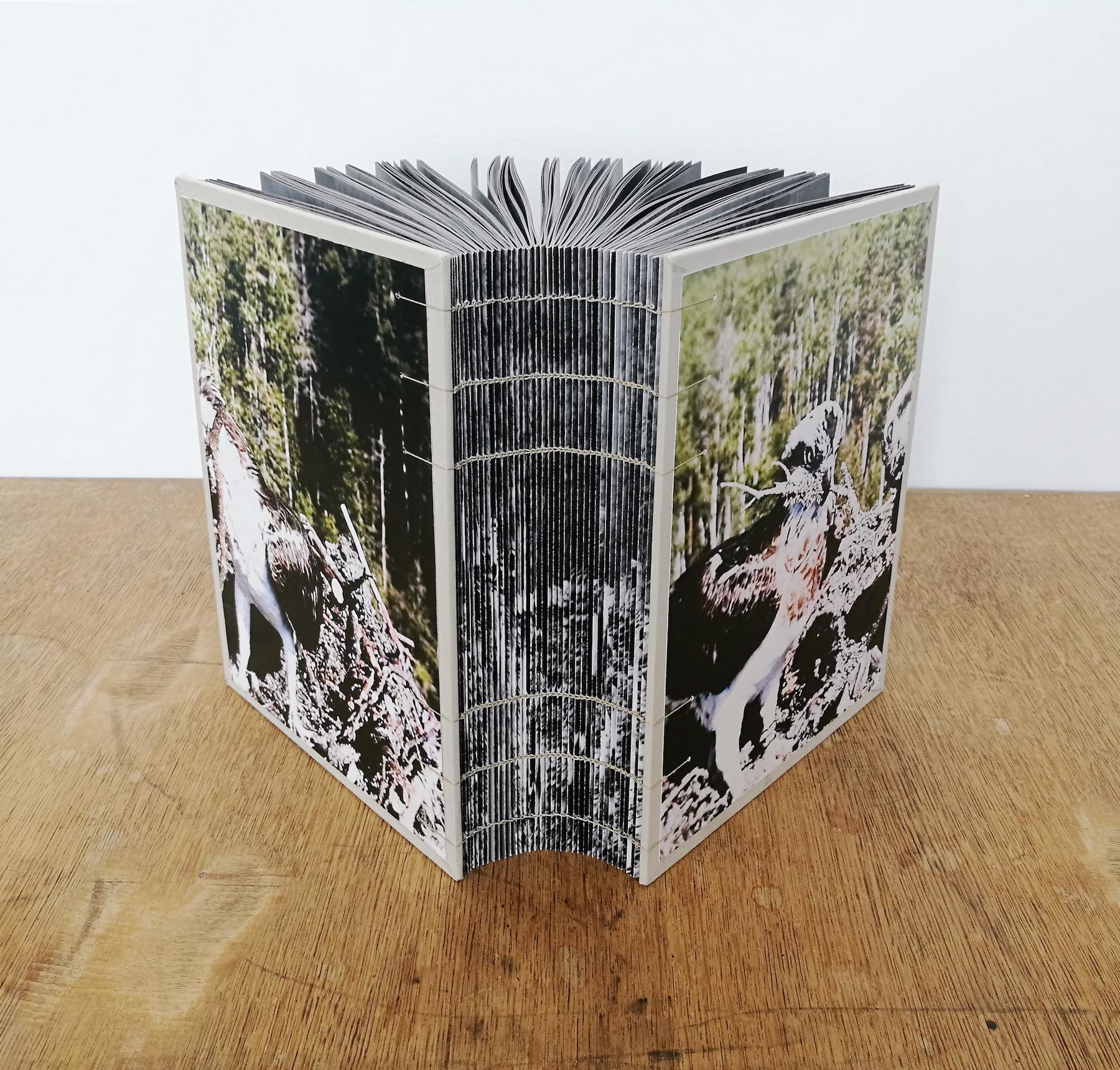 «Un livre photo, de l'idée à l'objet» par Léa Habourdin