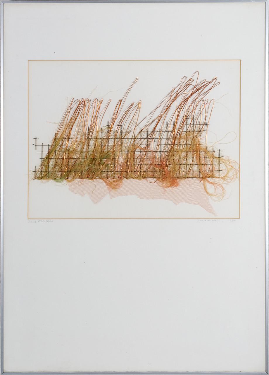 Sommerwildnis   (72x52cm)*