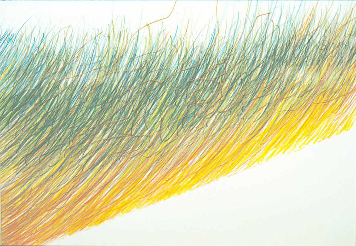 Sonnenzischeln   (52x72cm)