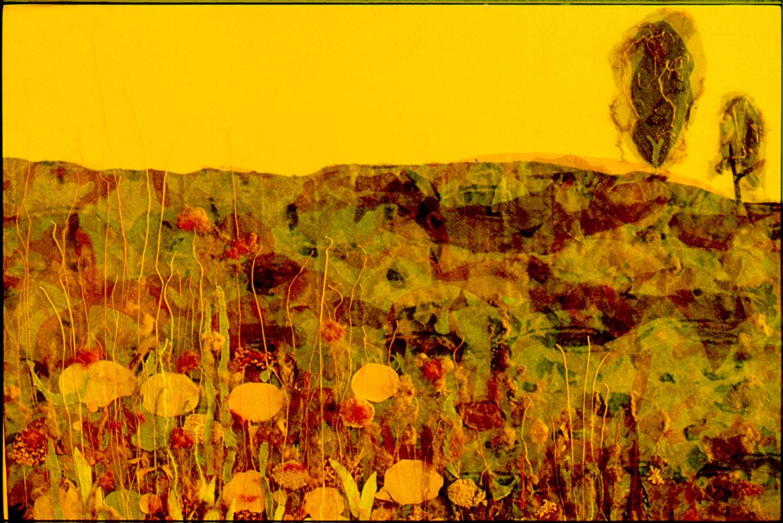 Frühlingswiese  (60x90cm)*