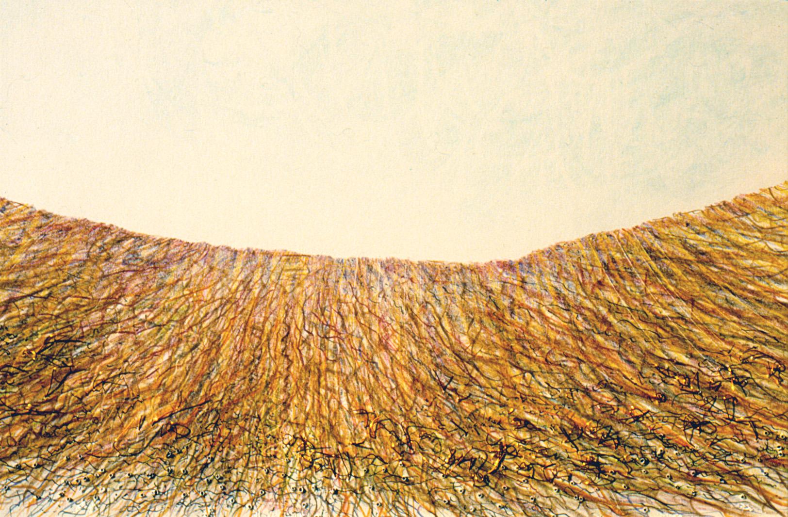 Erdwurzeln  (72x52cm) Detail
