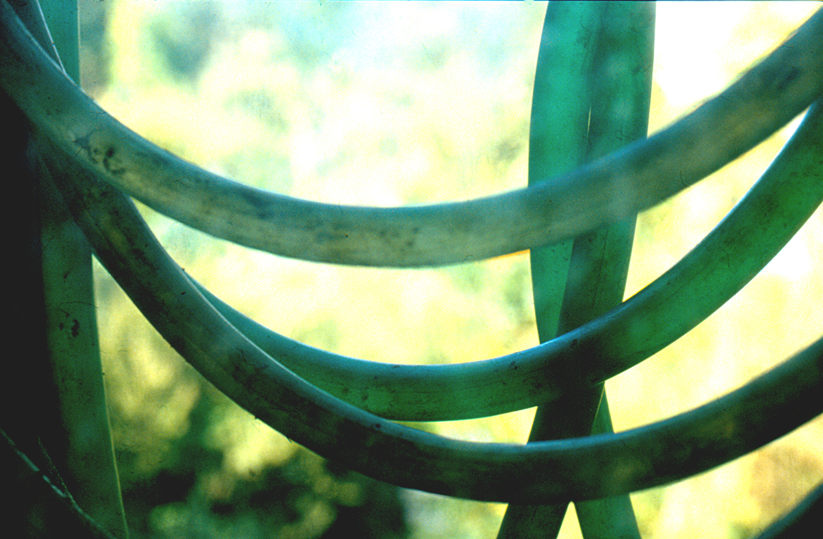 cryptogramme en vert