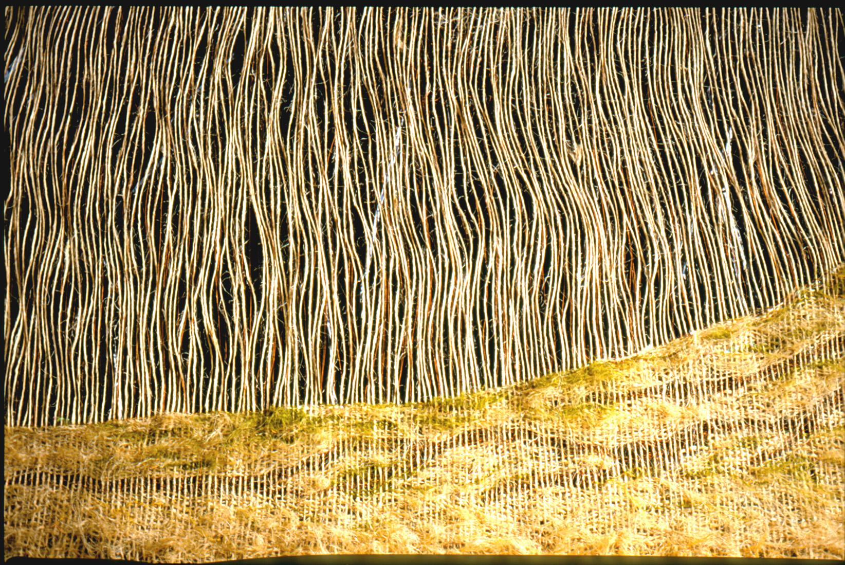 Sommerregen   (168x240x6 cm) ,       more info here