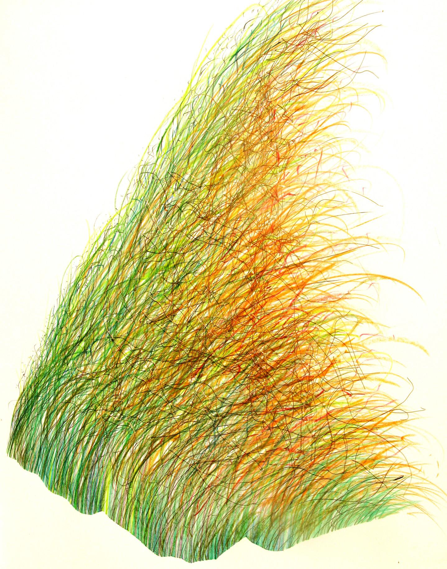foisonnement (Wiesenlied)   (72x52cm)