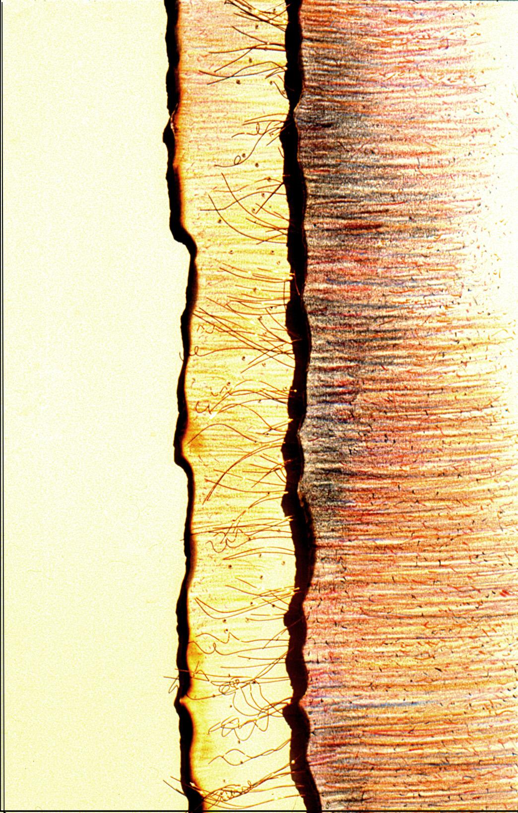 Randlinien  (72x52x4cm)