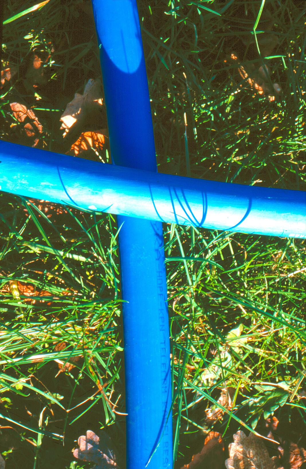 het blauwe kruis