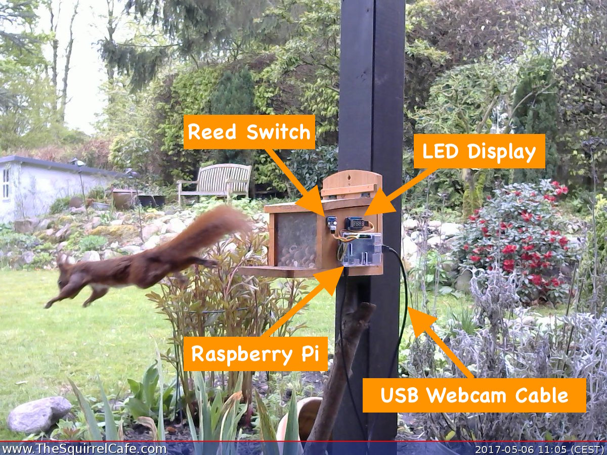Squirrel Café Sensor Setup
