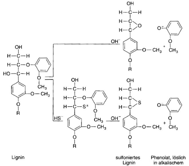 Lösungsmechanismus von Liginin