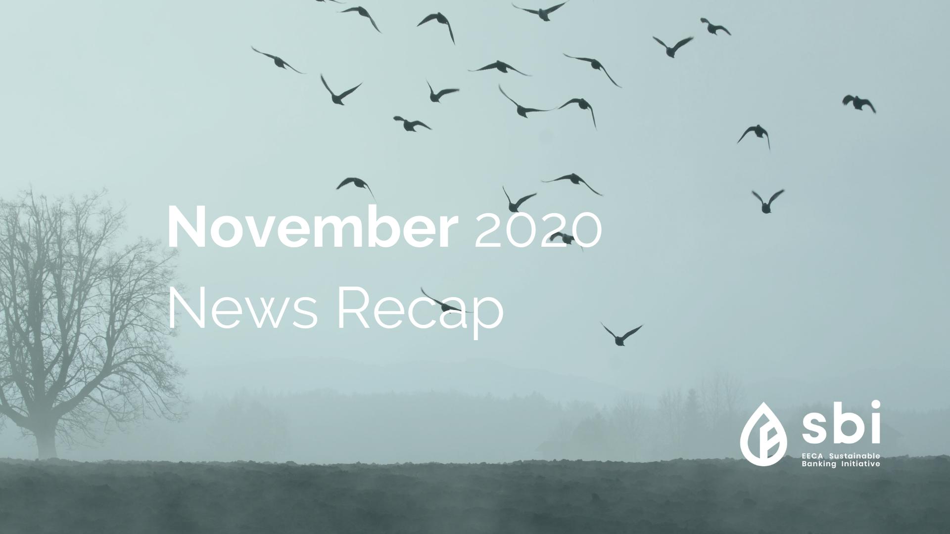 November 2020 News Recap