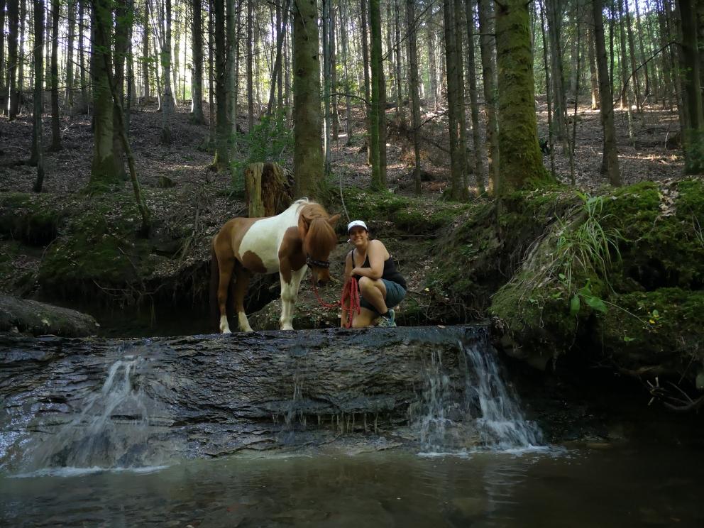 Bachwanderung mit den Pferden und Besuch der Murrhardter Wasserfälle