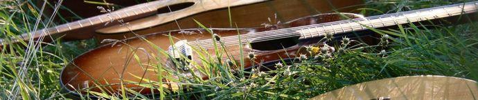 Gitarre in Wiese