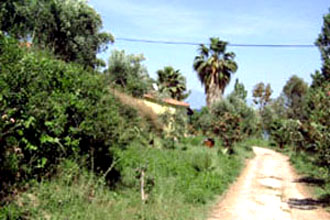 strandhaus kombi villa peloponnes