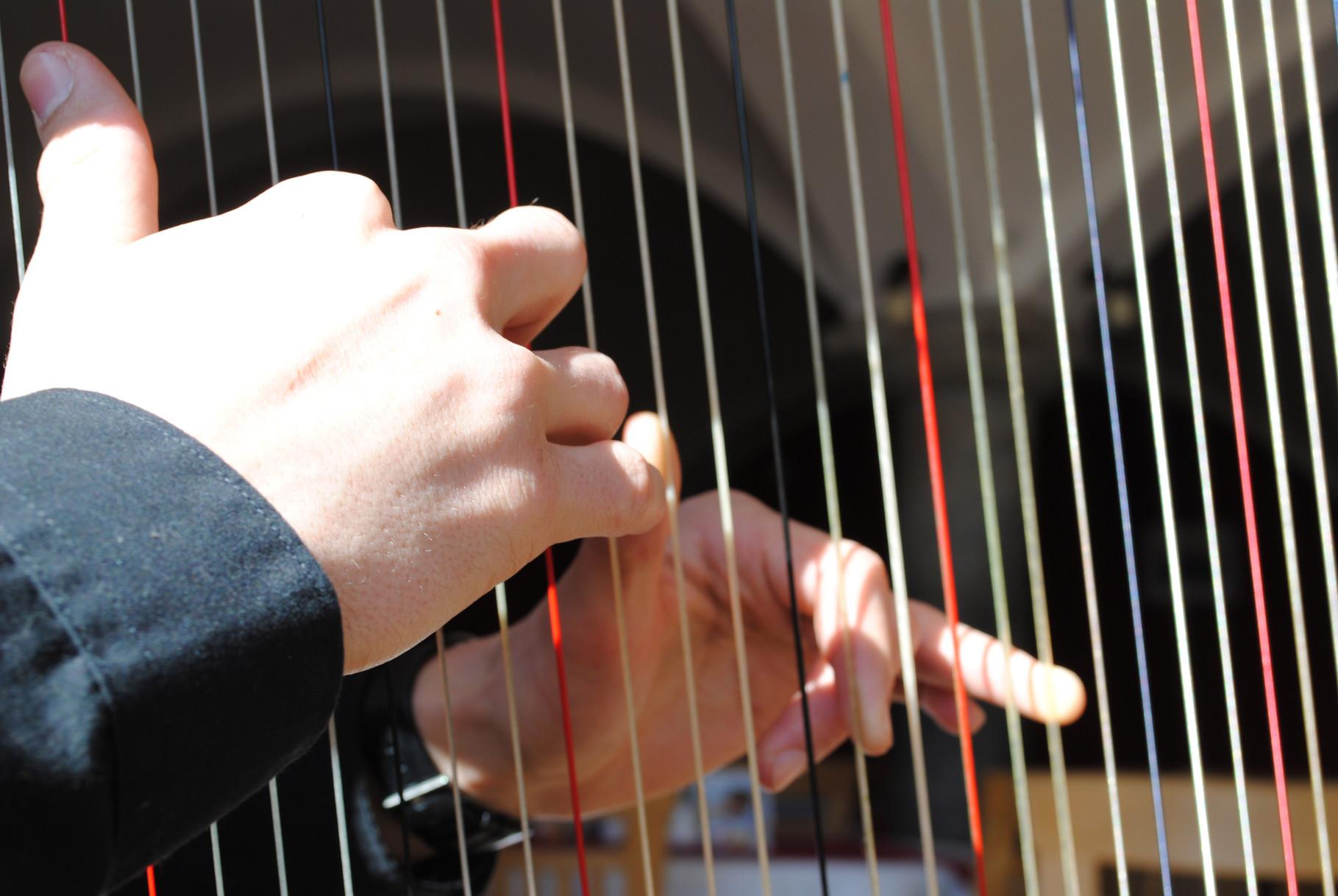 Ensemble Bernhard Kohlhauf Harfe