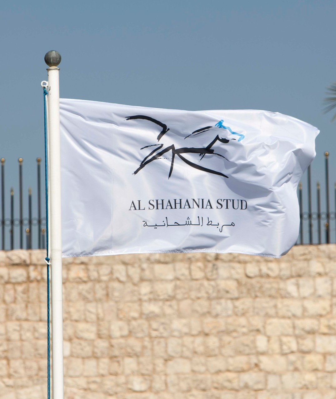 Our generous host: Al Shahania Stud Farm