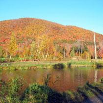 Mont St-Hilaire en automne