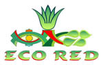 EcoRed S.A de C.V