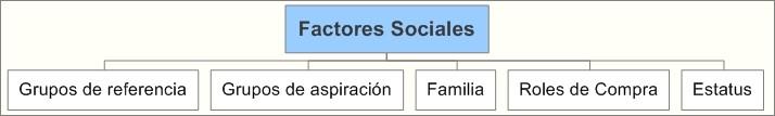 Factores sociales de los consumidores