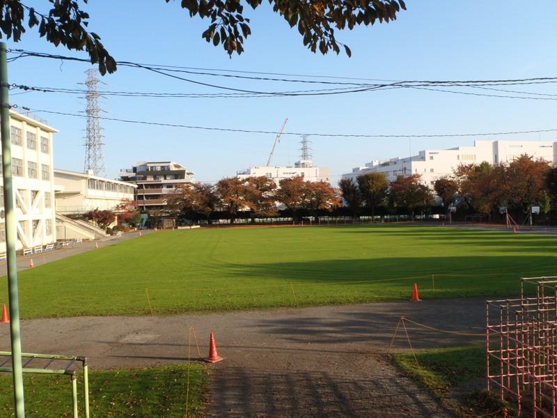 2013年11月16日 武蔵野小学校のWOS  ペレニアルライグラス播種後25日