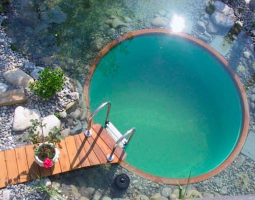 Naturpool Und Schwimmteich Paraguay Naturhaus Organisch Okologisch