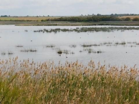Lagune de la Vega