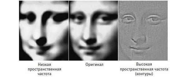 Мы лучше всего распознаем объекты по их контурам. Мы можем легко узнать лицо по одним контурам (справа), но улыбка лучше распознается на размытом изображении (слева).