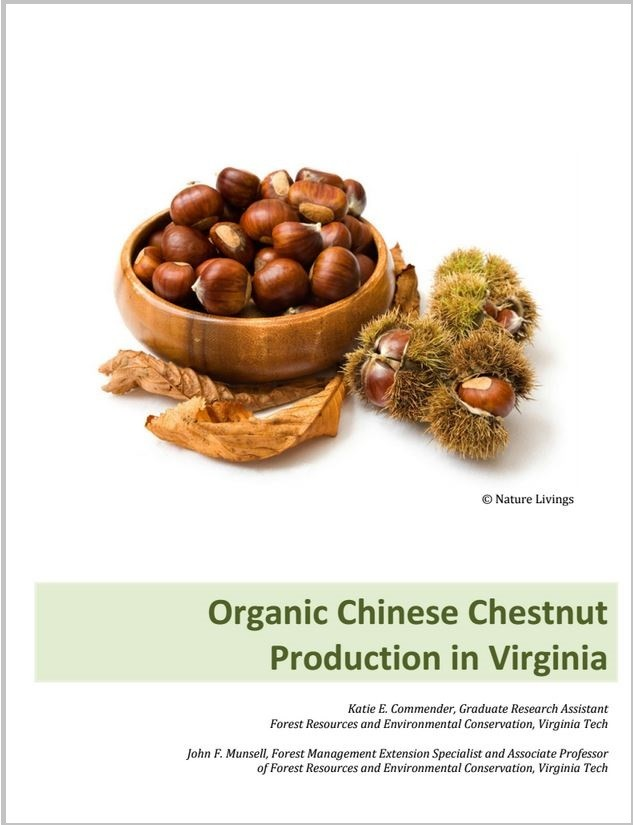 Organic Chinese Chestnut Production in Virginia